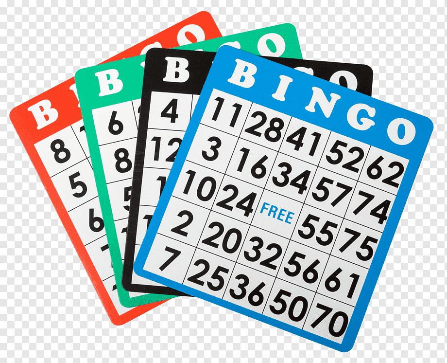 Bingo pacote de dinossauro 56304