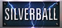 Silverball vídeo bingo 45295