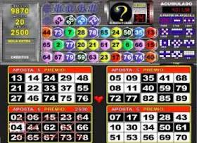 Bingo pelo whatsapp 66873