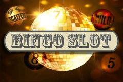 Video bingo 28449