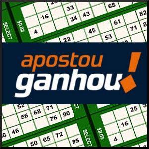 Bingo Brasil online gambling 27642